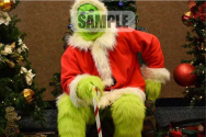 The Grinch Character